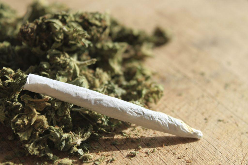 A cannabis joint. Copyright 3news.co.nz