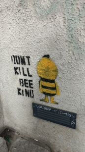 A Bee on Kevin Street Dublin, image by Hannah Lemass
